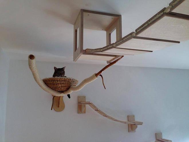 Meuble chat terrain de jeu l